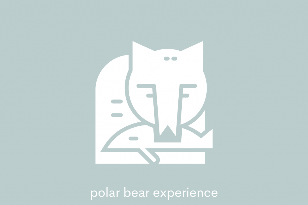 polar bear eats seal